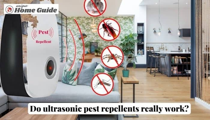 Do ultrasonic pest repellents really work